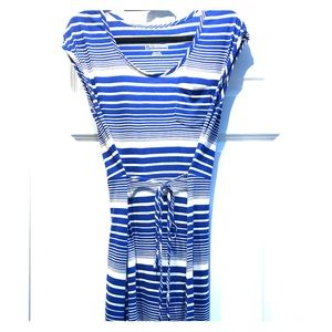 North Face blue and cream  striped dress